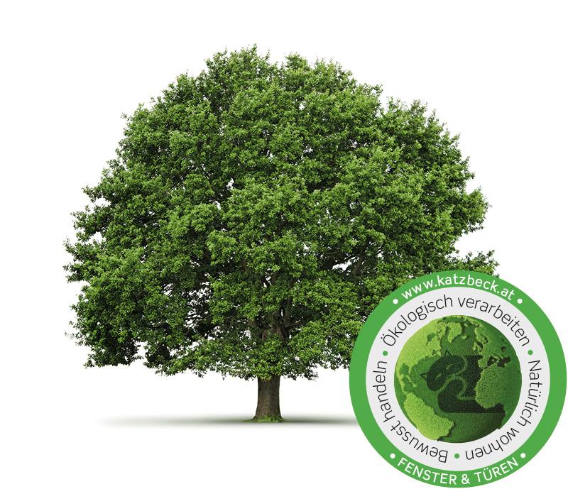 Holz ist eines der wichtigsten Rohmaterialien für KATZBECK. Wir akzeptieren daher selbstverständlich kein illegal gefälltes Holz, sondern stellen hohe Anforderungen, um die Verfügbarkeit von FSC zertifiziertem Holz zu erhöhen.